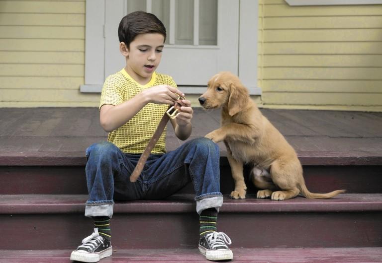 ct-dogs-purpose-kass-0127-20170126